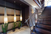 Corridor, plants and staircase — Stock Photo