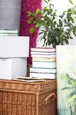 Books on wicker box — Stock Photo