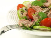 Tuna salad with tomatoes on isolated background — Stock Photo