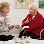 Elder women meeting — Stock Photo