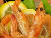 Shrimps with lemon slices, closeup — Stock Photo