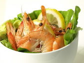 Shrimp appetizer, isolated — 图库照片