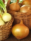 Onions and spring onions in baskets — Stock Photo