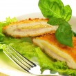 Cutlet, ioslated, close up — Stock Photo