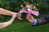 I don't want flowers — Stock Photo