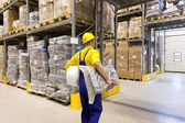Working in warehouse — Stock Photo