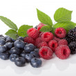 Composition of fresh wildberries — Stock Photo #39278615