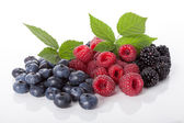 Composition of fresh wildberries — Stock Photo