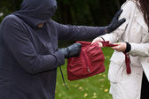 Thief in the park — Stock Photo