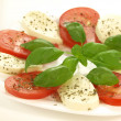 Caprese salad, isolated — Stock Photo #40408321