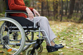 Lady on wheelchair in the forest — Stock Photo