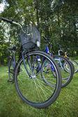 Bikes in the line — Stock Photo