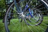 Bike spokes — Stock Photo