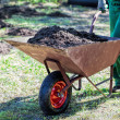 Foto de Stock  : Transport on wheelbarrow