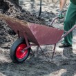 Worker transports soil — Stock Photo #41773375