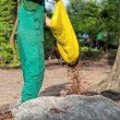 Стоковое фото: Gardener spills mulch on barrier