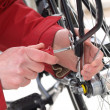 Stock Photo: Bicycle repair, close-up