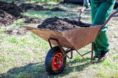 Transport on a wheelbarrow — Stock Photo