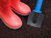 Digging the hole — Stock Photo