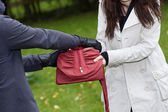 Theft in park — Stock Photo