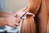 理发店剪头发 — 图库照片