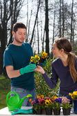 Gardeners planting flowers — Stock Photo