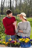 Man giving daisy his girlfriend — Stock Photo