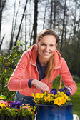 Woman planting pansy flowers — Stockfoto