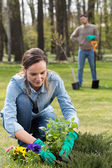 Preparing garden for summer — Stock Photo