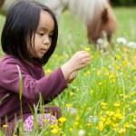 Little girl break yellow flowers — Stock Photo #48703445