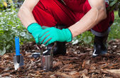 Man uses tools to work in the garden — Stock Photo