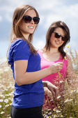 Girls pluck flowers on a meadow — Stock Photo