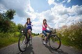 Girls on a trip riding bicycles — Stock Photo