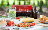 Before barbecue party — Stock Photo