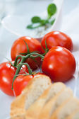 Beautiful tomatoes on grill party — Stock Photo