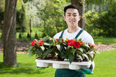 Man with flower seedlings — Stock Photo