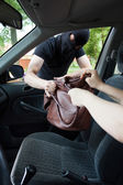 Burglar takes woman's bag — Stock Photo