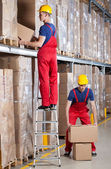 Man working at height in warehouse — Stock Photo