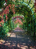 Colorful archway in Peterhof — Stock Photo