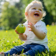Little boy and eating apple on picnic in park — Stock Photo