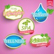 Icons for spa and healthy lifestyle — Stock Vector #42330147