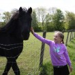 Young girl stroking horse — Stockfoto #25272657