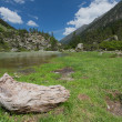 Stock Photo: Torrent in valley, National park of pyrenees, France