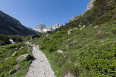 Valley in mountain, National park of pyrenees, France — Stock Photo