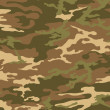Desert camouflage pattern — Stock Photo #24076307