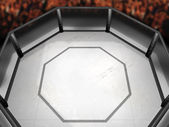 Octagon Fighting Ring — Stock Photo