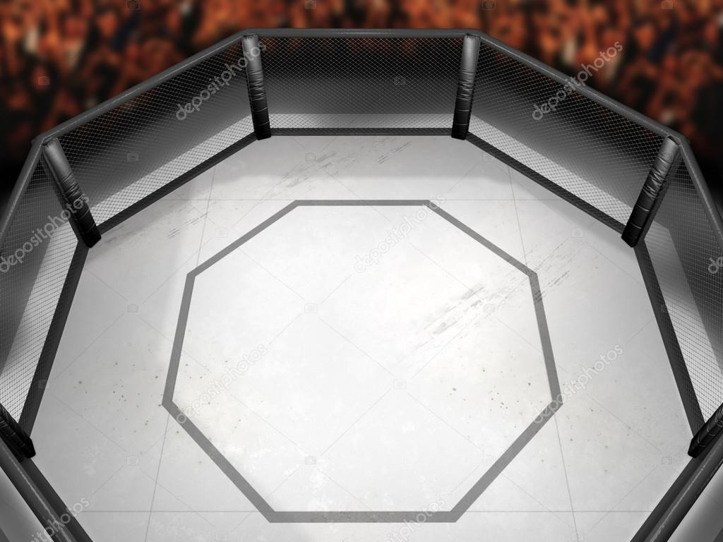 Octagon Fighting Ring — Stock Photo © neillockhart #24077535