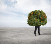Tangerine tree man standing in a desert — Stock Photo