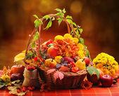 Outono ainda vida — Fotografia Stock