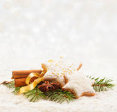 Christmas cookies with cinnamon and anise — Stock Photo